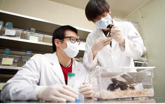 면역조절연구실